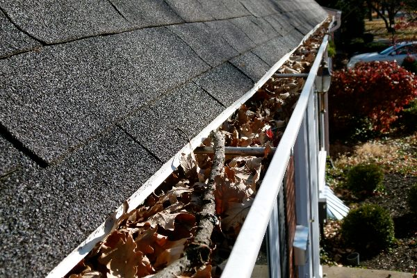 inspect roof maintenance