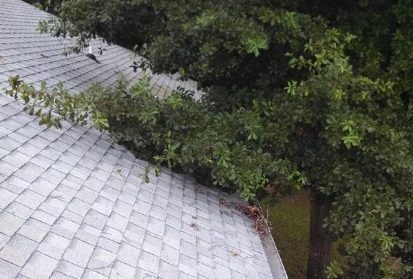 roof maintenance company
